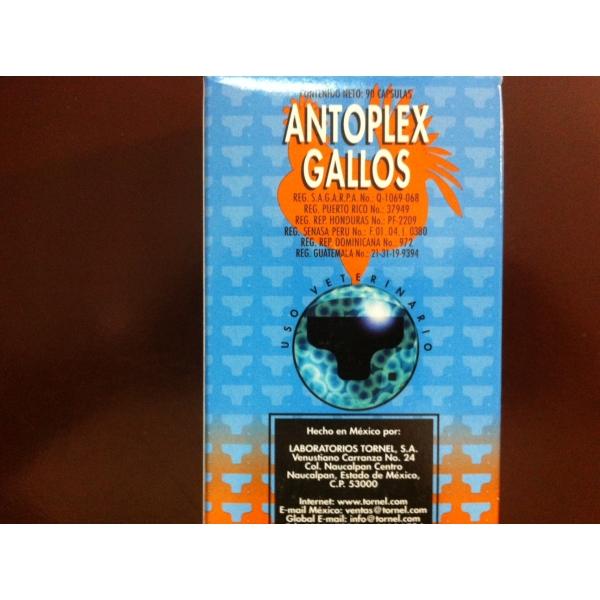 Antoplex Gallos 90cap